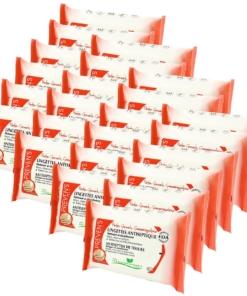 Prevens Paris Antiseptische Feuchttücher Granatapfel Desinfektion Multipack 24x